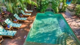 Choose This Beach Hotel in Nosara -  - Online Room Reservations