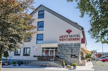 Foto del Aktiv Hotel Winterberg en Winterberg