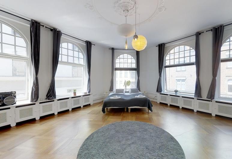 240 sqm2 Hotel Apartment in CPH Center, Copenhague