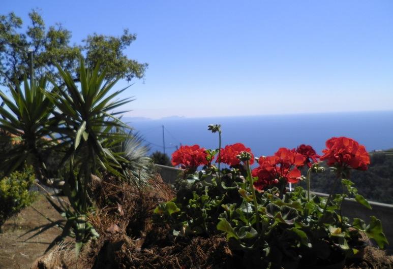 Villa Luz, Santa Cruz, Záhrada