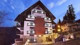 Sinaia hotel photo