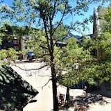 獨棟房屋, 1 間臥室 (Arapahoe Lodge House, ALJD) - 庭院