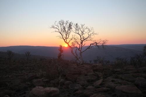 Matingwe