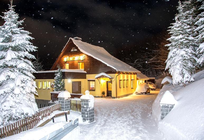 Pension Am Zechengrund, Oberwiesenthal, Pohľad na hotel – večer/v noci