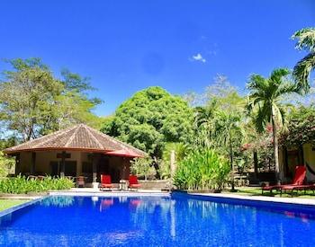 Picture of Casa Mapache B&B in Tamarindo