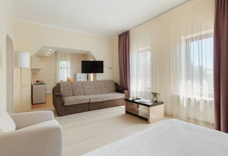 Asiya Hotel, Odessa, Deluxe Studio, 1 King Bed with Sofa bed, Kitchen, Living Area