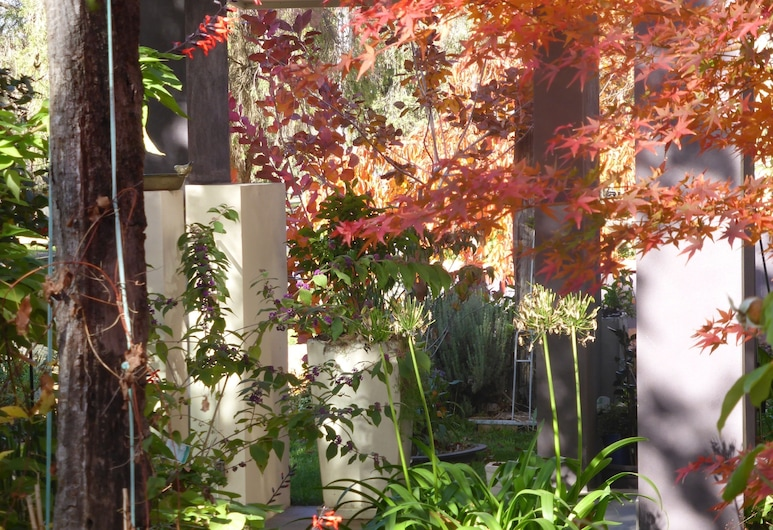 A Colourcity Apartments, Orindžas, Viešbučio teritorija