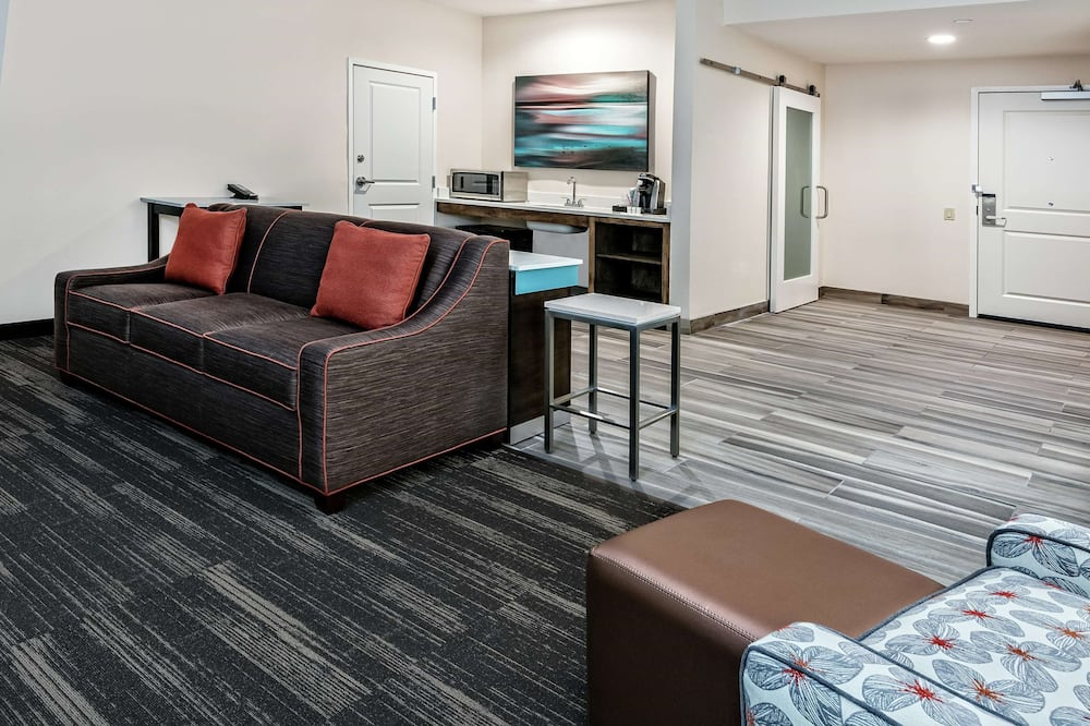 Suite, 1 Bedroom, Accessible, Non Smoking (1 King Bed w/ roll in shower) - Living Area