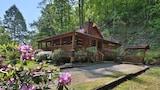 ภาพ Bear Nekkid 1 Br cabin by RedAwning ใน เซวีร์วิลล์