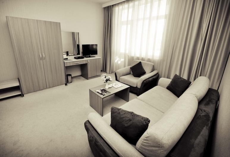 City Hotel Gabala, Γκαμπάλα, Περιοχή καθιστικού
