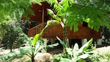 Monteverde accommodation photo