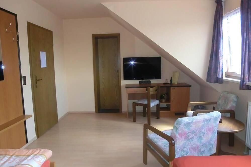 Standartinio tipo vienvietis kambarys - Svečių kambarys
