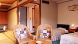 Choose This 3 Star Hotel In Izu