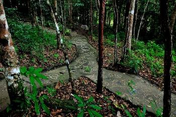 Gambar Chestnut Hill Eco Resort di Hat Yai