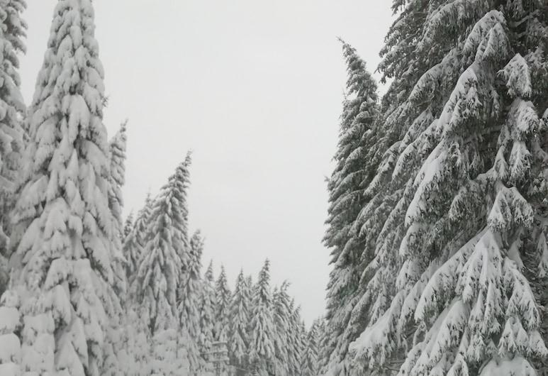 菲沃包曼飯店, 施瓦岑貝格/奧埃爾斯尼茨, 滑雪運動