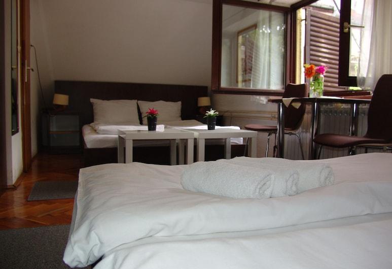 Hotel Maksimir, Záhreb, Trojlôžková izba typu Basic, 3 jednolôžka, Výhľad z hosťovskej izby