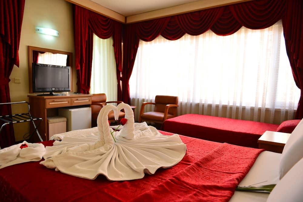 Jednolôžková izba typu Grand - Hosťovská izba