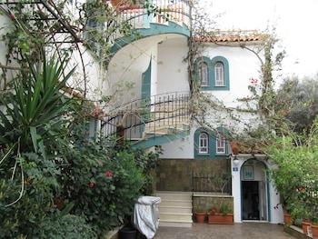 Picture of Villa Contessa in Malia