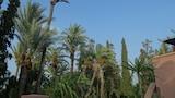 Hotel unweit  in Marrakesch,Marokko,Hotelbuchung