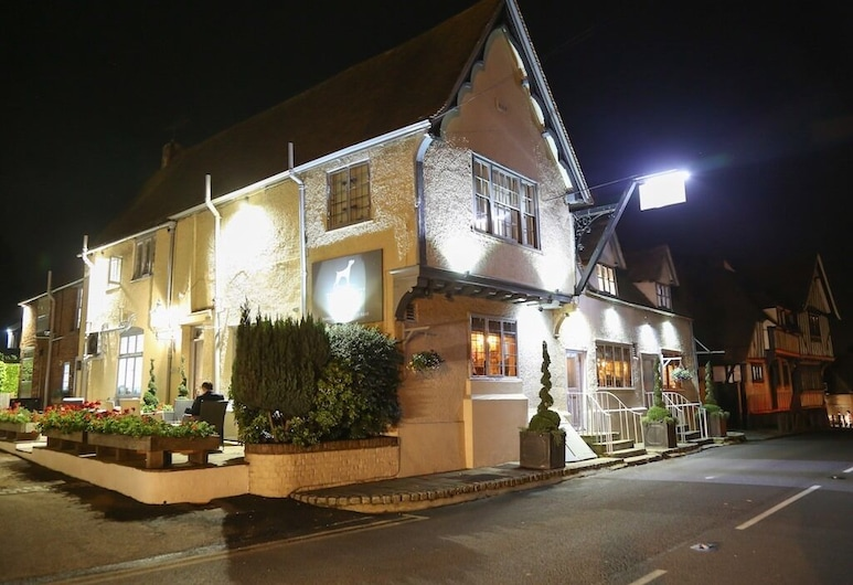 The Dog at Wingham, Canterbury