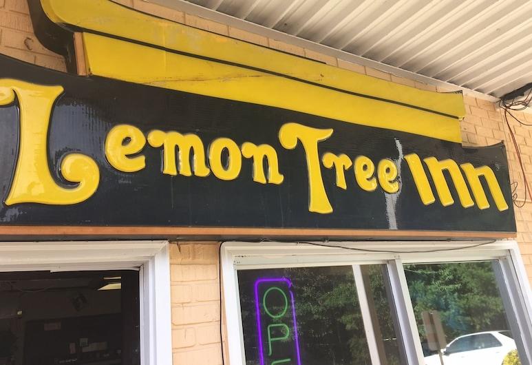 Lemon Tree Inn, Спрус-Пайн, Вхід до готелю