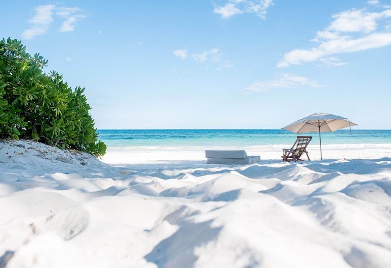 Nueva Vida de Ramiro, Tulum, Playa