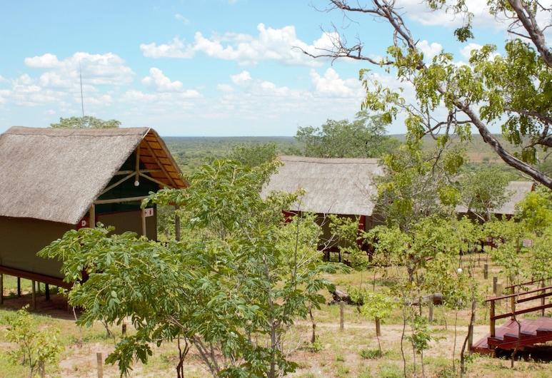Lion Roars Lodge, Kasane, Property Grounds