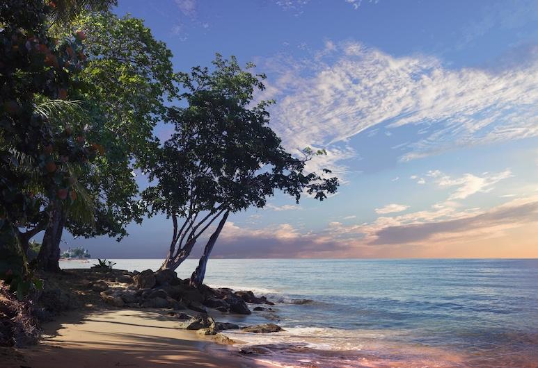 Qué Chévere, Rincon, Beach