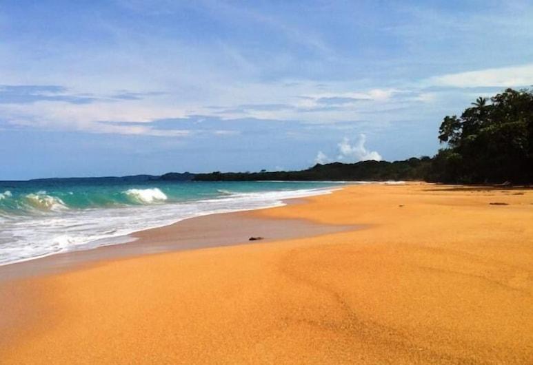 Playa Bluff Lodge, Bocas del Toro