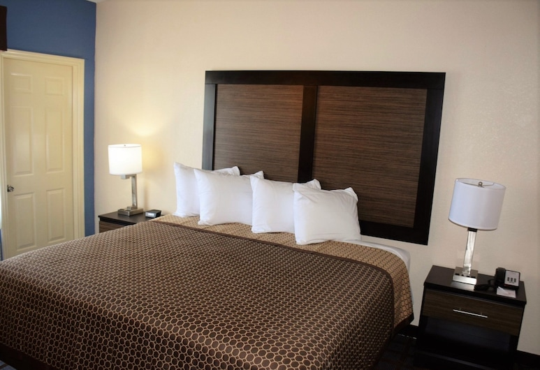 Hawthorn Suites by Wyndham Columbia, Columbia, Studio, 1 King Bed, Non Smoking (Suite), Guest Room