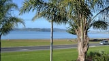 Choose This Pool Hotel in Whitianga