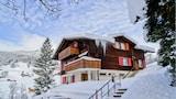 Grindelwald Hotels,Schweiz,Unterkunft,Reservierung für Grindelwald Hotel