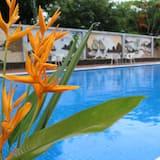 ห้องสแตนดาร์ดดับเบิลหรือทวิน, เตียงควีนไซส์ 1 เตียง - สระว่ายน้ำกลางแจ้ง