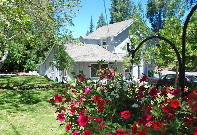 The Pines Motel and Cottages, Grass Valley, Property Grounds