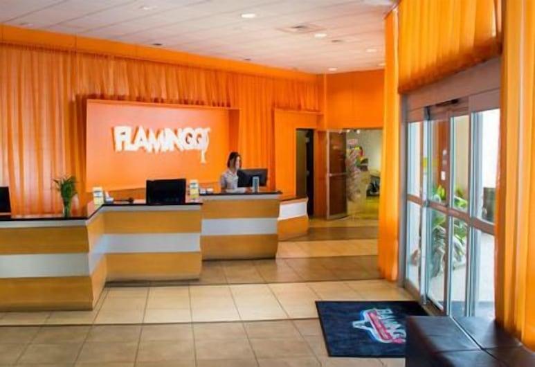 Flamingo Express Hotel, Kissimmee, Reception