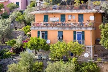 Picture of Giardino dei limoni in Pieve Ligure