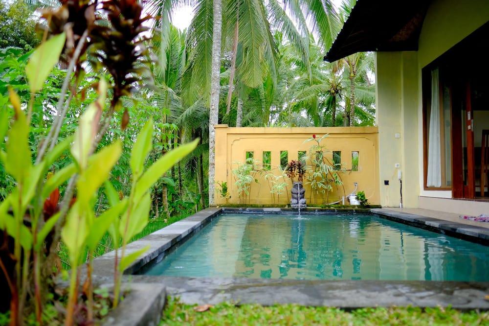 Medusmēneša divvietīgs numurs, privāts baseins - Privātais baseins