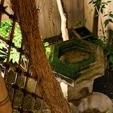 حديقة