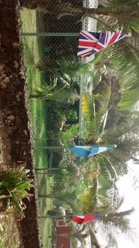 B&B Iguana Gorda