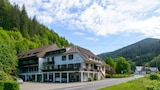 Sélectionnez cet hôtel quartier  à Bad Rippoldsau-Schapbach, Allemagne (réservation en ligne)