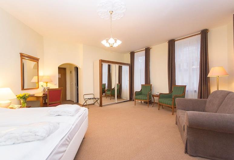 安格里克德維爾飯店, 卡羅維瓦利, 標準雙人或雙床房, 客房