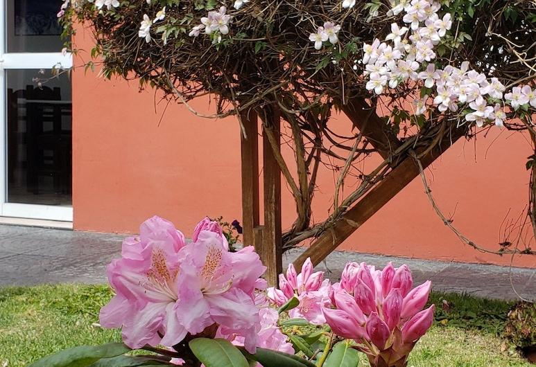 HOSTERIA PATAGONIA, El Calafate, Dvůr