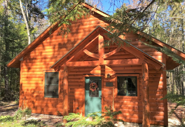 Robert Frost Mountain Cabins, Ripton, Cabin 5 (Pet Friendly) - Owl's Branch, Room