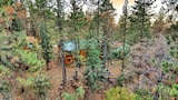 Choose this Cabin / Lodge in Big Bear City - Online Room Reservations