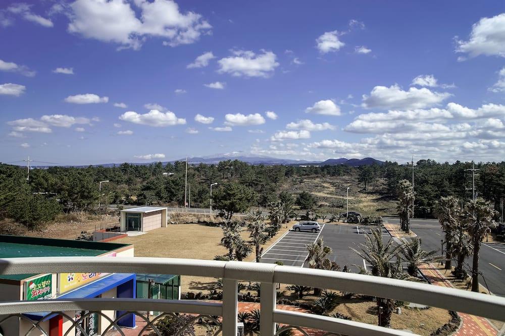 Estudio, vista a la montaña - Vista al balcón