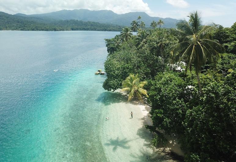 Evis Resort, Halisi