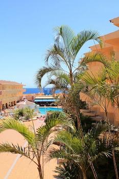 Picture of Marino Tenerife in Arona