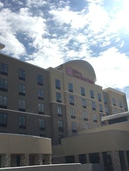 Picture of Hilton Garden Inn Dallas/Arlington South in Arlington