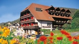 Reserve this hotel in Enzklosterle, Germany