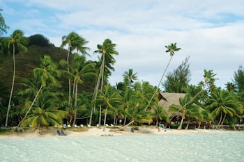 Picture of Les Tipaniers in Moorea